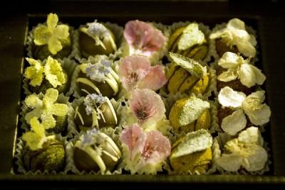 Luxuriöse Pralines, gesehen bei Winterfeldt-Schokoladen