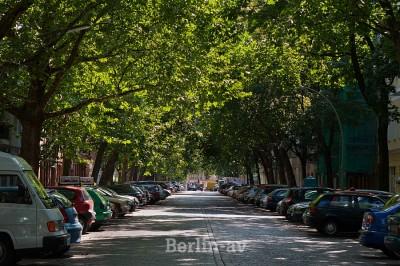 Viele Bäume an diesem Strassenzug in Berlin-Schöneberg