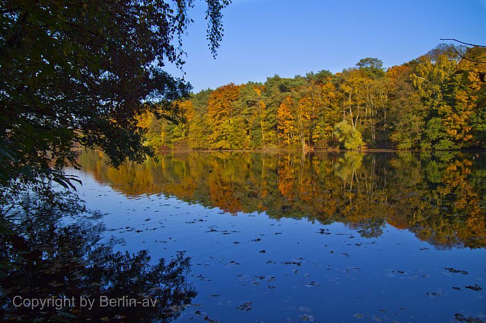 Fototipp Herbstbilder - Herbstliche Spiegelungen, fotografiert an der Krummen Lanke