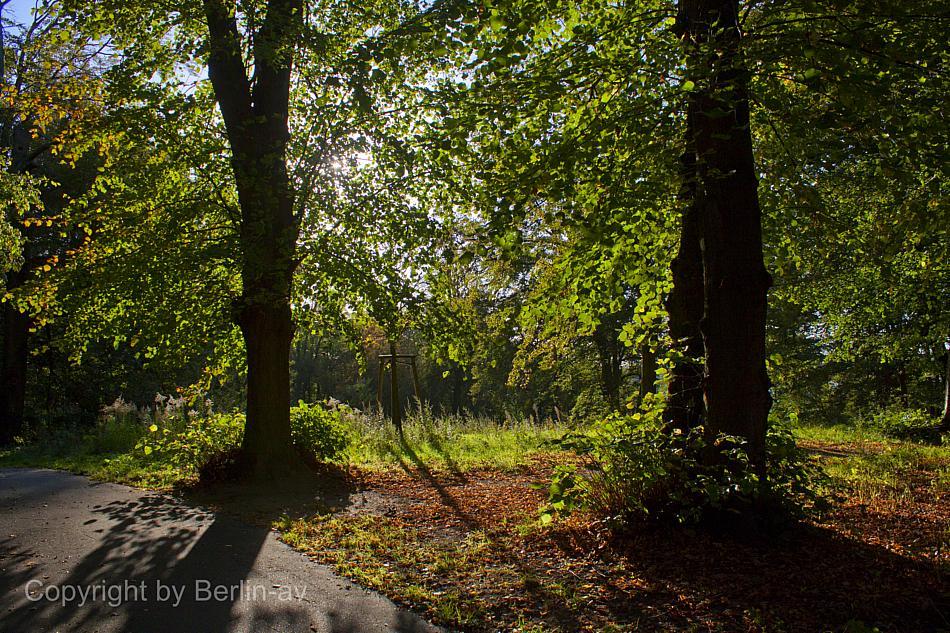 Fototipp - Herbst im Gegenlicht, fotografiert im Glienicker Park
