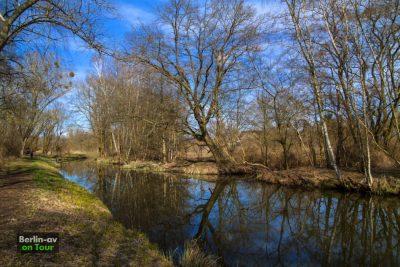 Frühling am Pfefferfließ im Naturpark Nuthe-Nieplitz