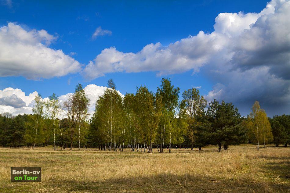 Im Wildgehege Glauer Tal - Naturpark Nuthe-Nieplitz