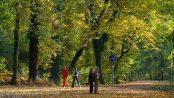 Herbst in Glienicke - Autum in Glienicke