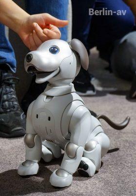 Aibo, der kleine Hund von Sony, erstmals in Europa auf der IFA 2018