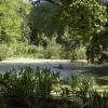Radtour Grunewald: Kleiner Teich in der Nähe der Havel