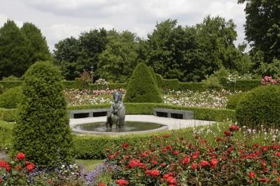 Rosenschau im Britzer Garten