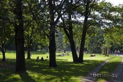 Liegewiese Volkspark Wilmersdorf