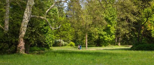 Frühling auf der Berliner Pfaueninsel