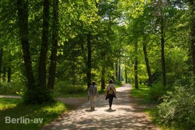 Spaziergang auf der Berliner Pfaueninsel