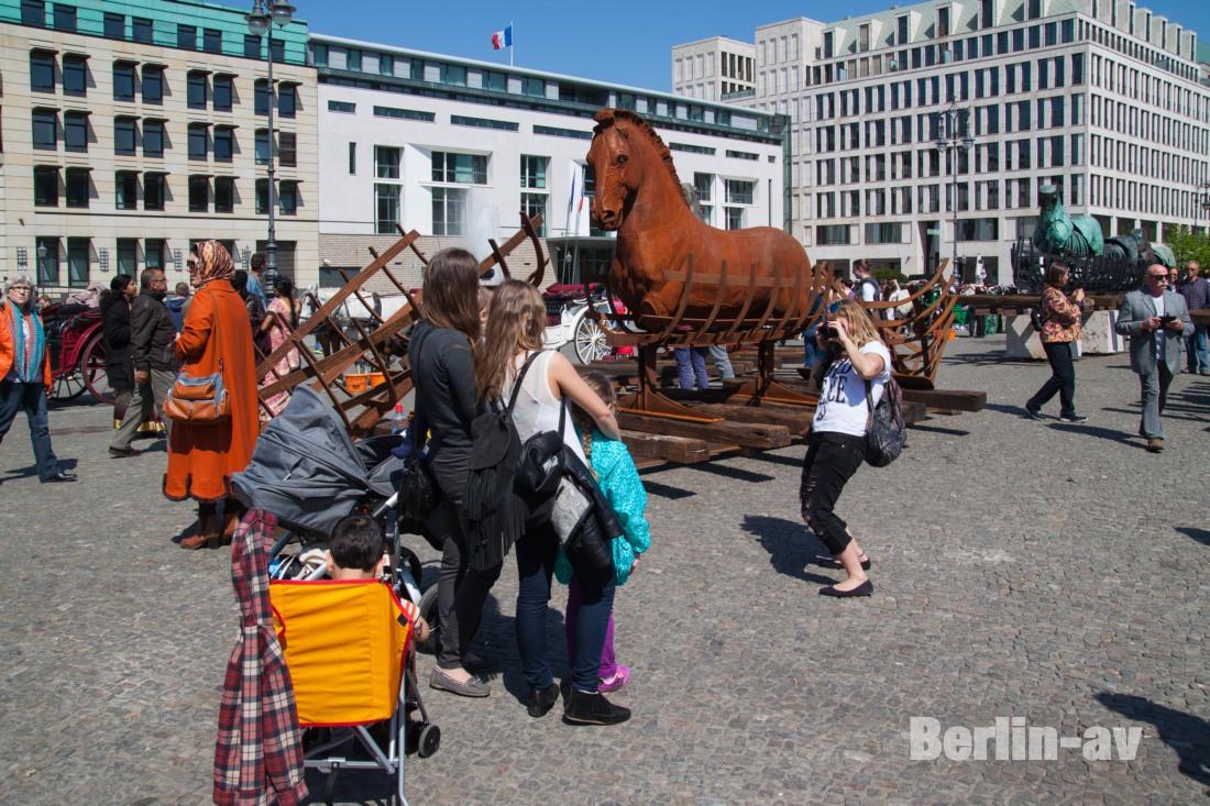 pferde_2089