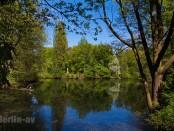 Frühling im Berliner Tiergarten