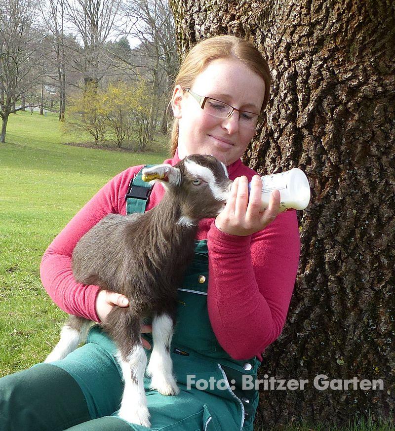 """Tierpflegerin Nora und """"Mucki"""" im Britzer Garten"""