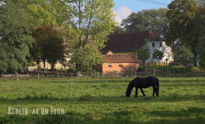 Linum, lohnendes Ausflugsziel in der Nähe von Berlin