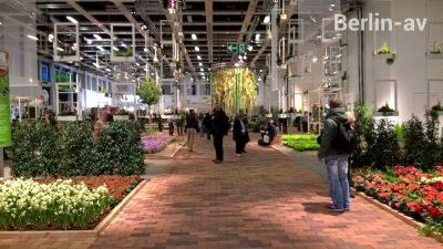 Blick in die neu konzipierte Blumenhalle auf der Grünen Woche 2018