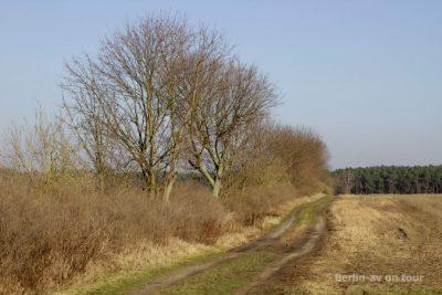 Im Naturpark Nuthe-Nieplitz