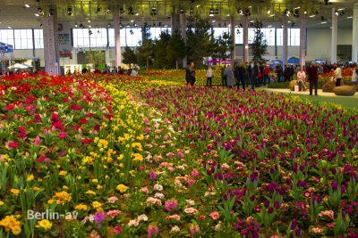 Die Blumenhalle auf der Grünen Woche 2020 ist einer der Publikumsmagneten